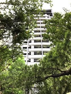 生態自然成建築主流「惠宇五十七間堂」蓋在森林裡