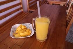 遊客愛喝芒果冰沙 玉井本地人卻最愛這一味