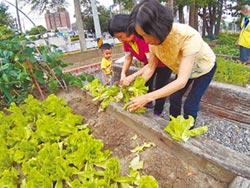 廢廊變菜園 綠美化兼食育