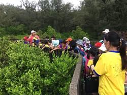 遊七股潟湖、淨灘 學童貼近自然