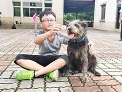 黃竹國小校犬「小黑」擊退毒蛇護師生