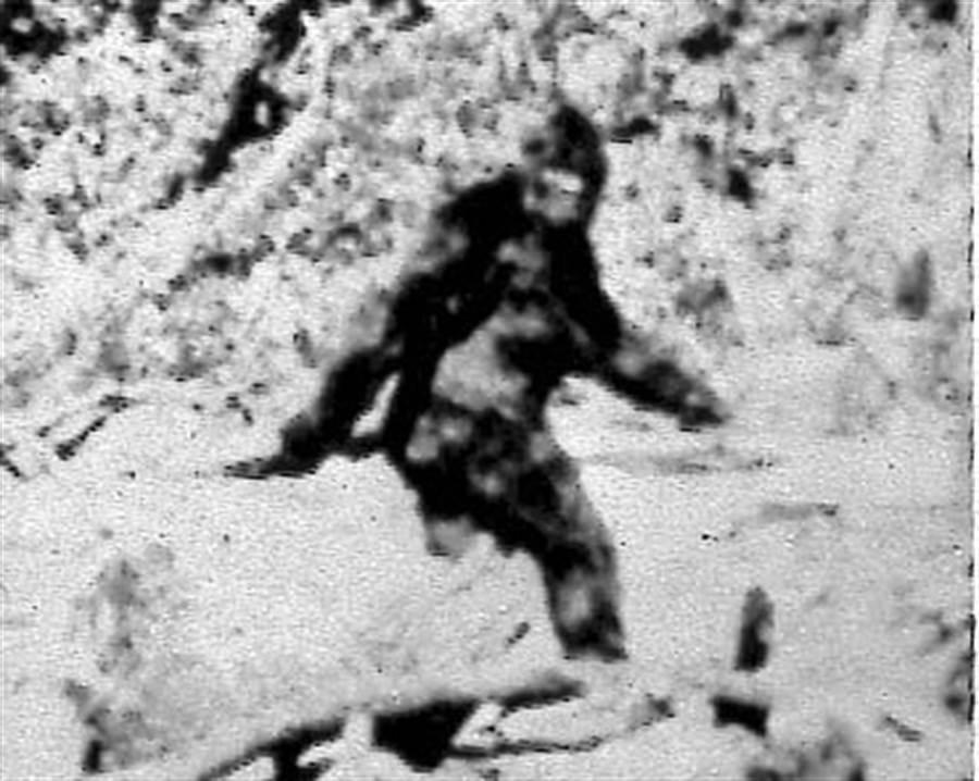 1967年10月20日所拍攝,疑似女性大腳怪的檔案照。(美聯社)