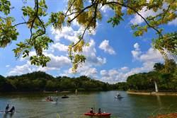 台南阿勃勒花開 端午連假遊風景區有優惠