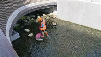 綠柳川環境維護 遊客感受美麗水域