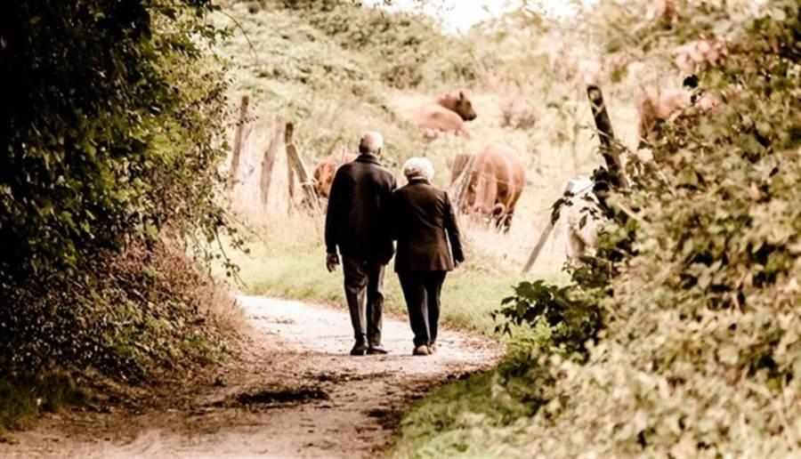 英國知名電視製作人桑德絲與作家史崔茲年輕時經歷過母親罹患失智症,讓他們體認到健康的重要。圖/pixabay