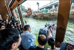 台北市立動物園缺失多 議員:市長不在水就混濁