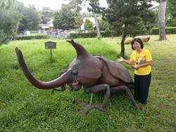 松園別館園區巨大昆蟲模型  成吸客利器