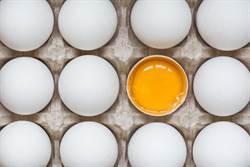 怕膽固醇不吃蛋?吃了中風風險降25%