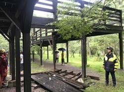 霧峰青桐林生態區棧道坍 13遊客跌落送醫