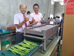 自日本進口機械助自動化 台南將軍蘆筍明年有望銷日賺外匯