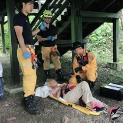 青桐林園區木棧平台白蟻侵蝕崩塌多人受傷 市府關懷傷者並全力善後