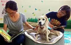 屏科大閱讀犬Minnie是偵測老兵  退伍轉行當陪讀