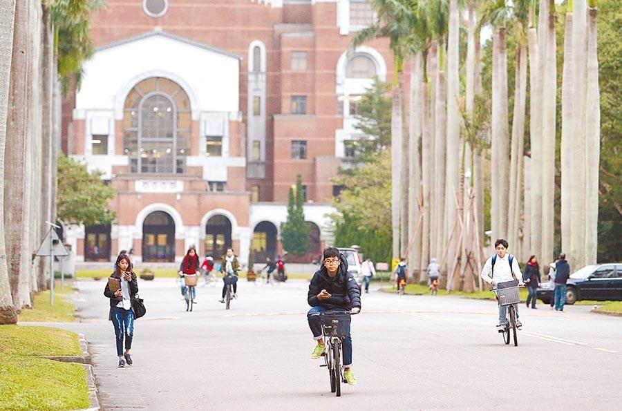 圖為台灣大學的椰林大道。(本報系資料照)