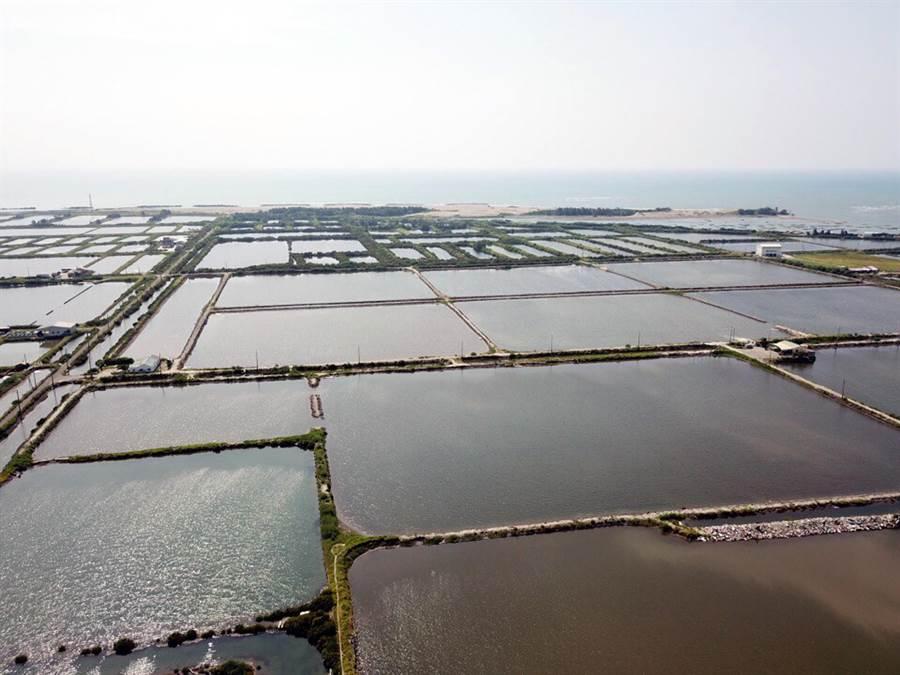 海魚塭地被視為適合推動漁電共生。(台鹽綠能提供)