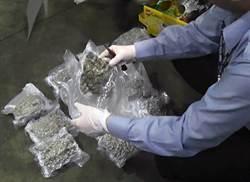 行李箱裝好裝滿 旅客大喇喇運1億5千萬大麻花