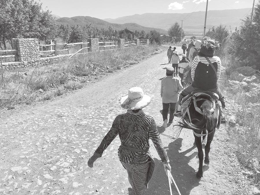 納西女人和滇馬