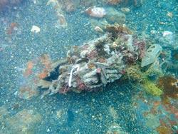 潛水志工淨海 清出30公斤垃圾