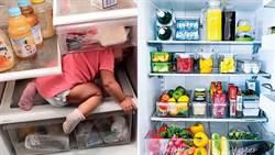 夏季冰箱最耗電!譚敦慈:最多只能放__成