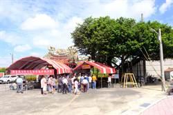 新營轉運站開發300歲老榕要搬家 民眾齊聚祈福