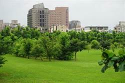 台中高鐵特區房市大熱門 綠意創造銷售商機