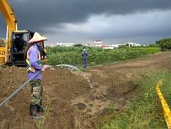 防治秋行軍蟲 台南市18日進入第二階段強制噴藥
