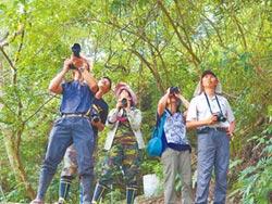 多元保育動物 宛如龍貓森林