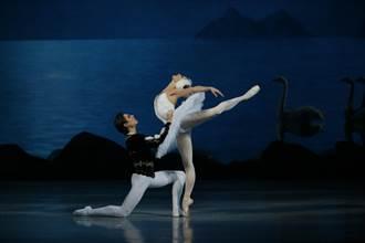 指揮、舞星和樂團缺一不可 馬林斯基的天鵝湖會呼吸