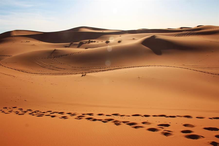 世上最頑強的魚 在沙漠中活5萬年(示意圖/達志影像)