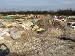 文蛤殼濫倒成山 雲林環保局取部分做濁水溪固沙
