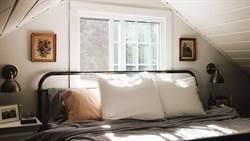塵蟎每天吃3公克毛屑!枕頭正確保養這樣做