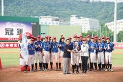 華南金控盃青少棒賽 臺東縣奪冠