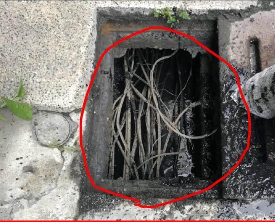 下水道被電纜線或是植物根莖阻塞。(圖/韓國瑜選總統全國後援會)