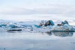 北極變多熱?雪橇犬「末日水上飄」