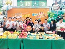 台南芒果豐收 外銷大躍進
