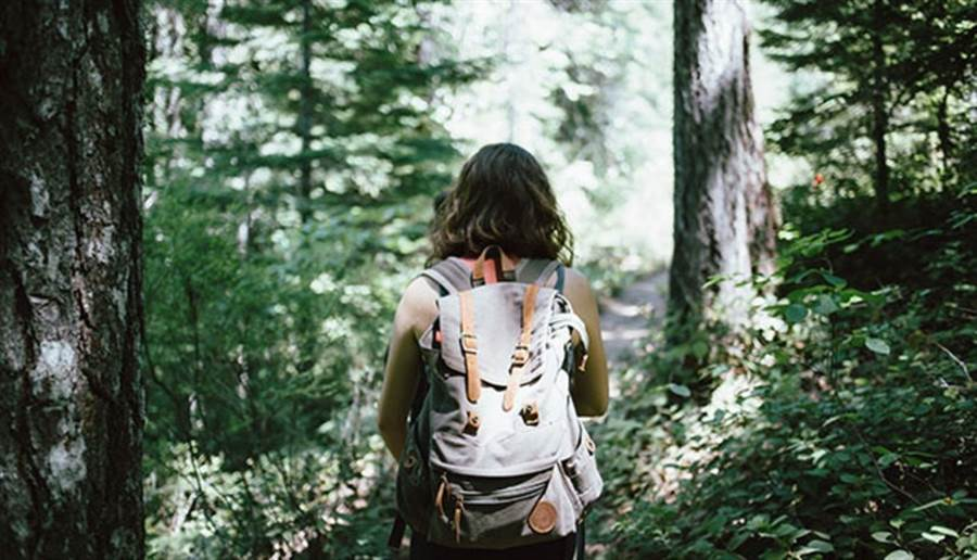 (森林浴是兼顧身心的課程,需要專人導覽,練習五體感官感受大自然的力量,進而平衡身心。圖片來源:pixabay)