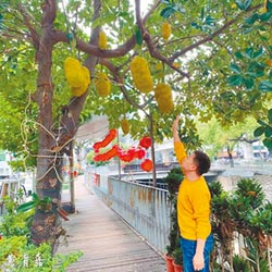 水果綠園道 打造都市小清新