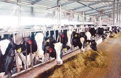 設畜牧場加嚴 將訂落日條款