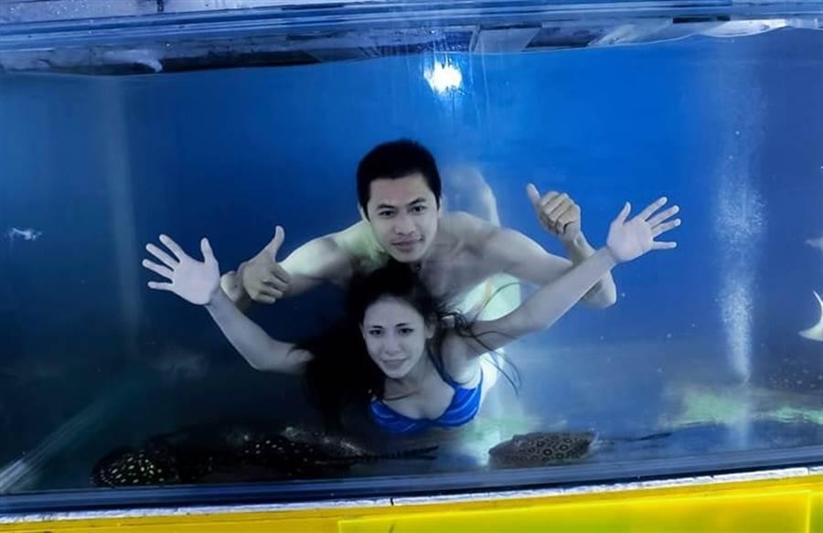 因耐不住連日高溫,原PO全家跳魚缸消暑成了珍貴的畫面。(圖/爆廢公社二館)
