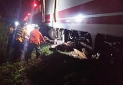 台鐵夜車花蓮撞死4牛 延誤150分鐘