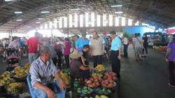 郭信良籲市府積極作為讓芒果農安心 農業局:已多管齊下