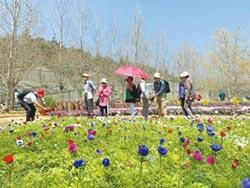 台大山地農場 推廣在地蔬食