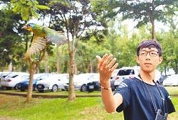 許宸化身奶爸 搭救五色鳥寶寶