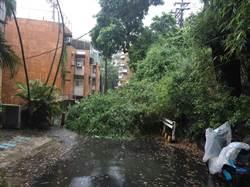 豪大雨北投土石滑落  警拉警戒線管制交通