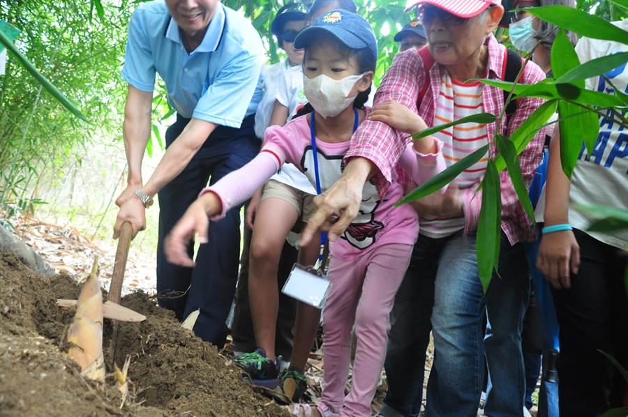 「潭子竹筍節」推出挖竹筍體驗活動,參與的小朋友直呼「好有趣」。(王文吉攝)