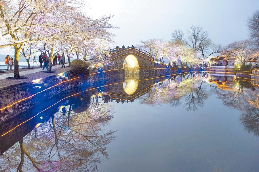 無錫在大陸城市宜居競爭力排行榜高居第二名。圖為遊客在無錫黿頭渚景區夜賞櫻花。(新華社資料照片)