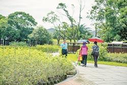 新亮點 龜山苗圃生態園區啟用