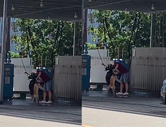 他拿「高壓水槍」幫狗洗澡 慘叫聲讓網友崩潰