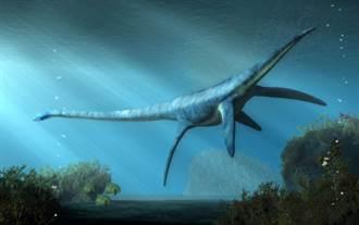 水怪現身? 南極洲驚見史前巨獸