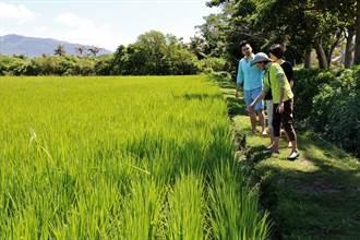 小旅行合法性搞不定 輔導11社區生態旅遊的里山要成立旅行社