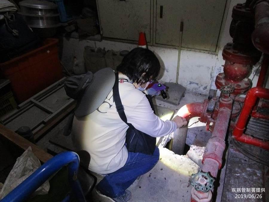 疾管署防疫人員檢視大樓管線是否有隱藏性孳生源。(疾管署提供)